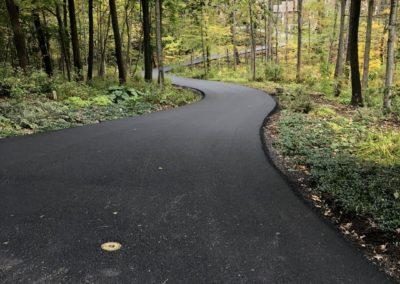 Asphalt Driveway Through the Woods
